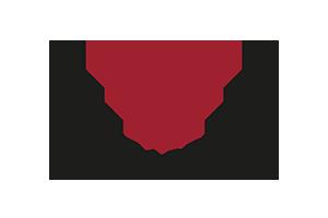 Bild Viva Barefoot Logo